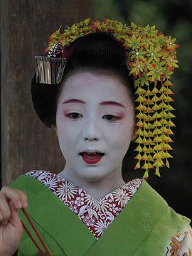 Geisha Kyoto van eric piel