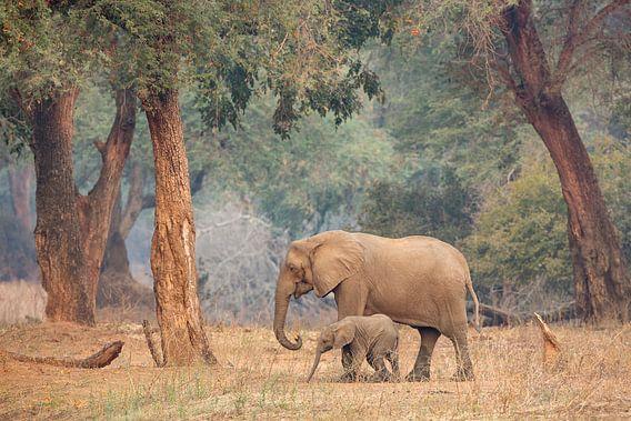 Moeder en dochter op stap
