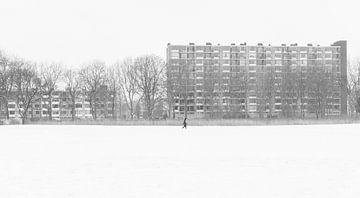 Spaziergang im Winterwunderland von Bart van Lier