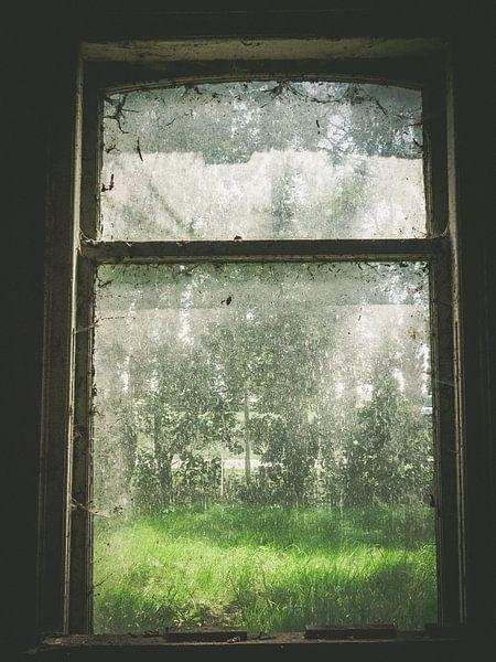Vies verlaten raam van Martijn Tilroe
