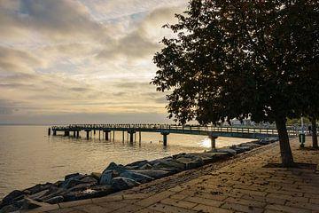 Promenade im Herbst in Sassnitz auf der Insel Rügen von Rico Ködder