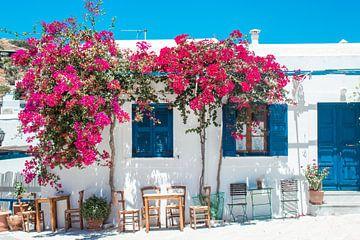 Typisch Grieks huisje met bloemen van Joep Brocker