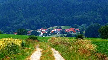 Weserbergland van Caroline Lichthart