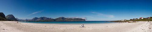 Arctisch Strand van