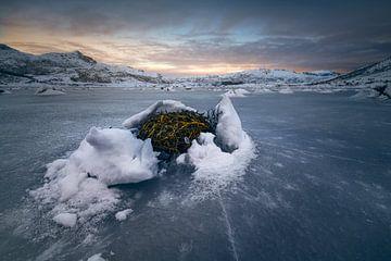 Fjorden Lofoten van Peter Poppe