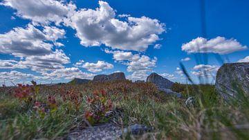 Landschaftsfoto während eines schönen Frühlingstages im Nationalpark Dartmoor, England von Rick de Visser