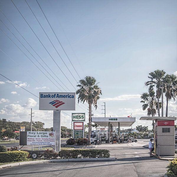 Florida VIII