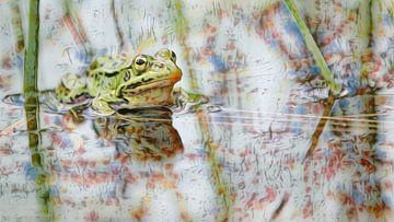 Kleurige Kikker van Jacqueline Gerhardt