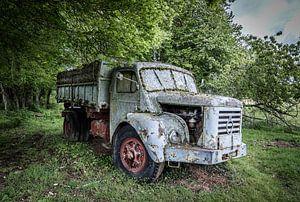 Oude truck in het bos