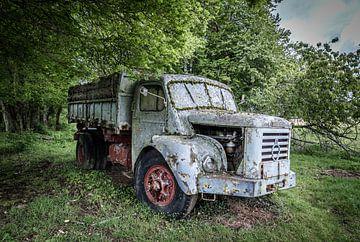 Vieux camion dans la forêt sur