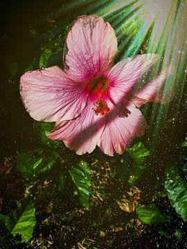 Roze bloem van Renee Alexandra Serlier