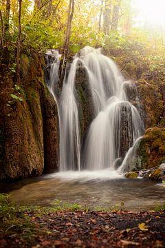 Mystischer Wasserfall von Silvio Schoisswohl