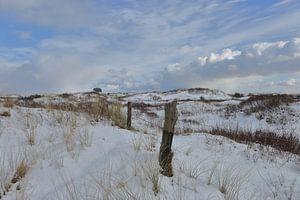 Ameland in winterkleed