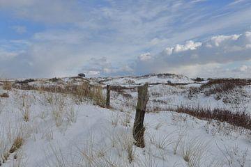Ameland in winterkleed van Rinnie Wijnstra