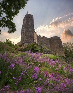 Le château de Stolpen