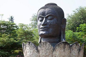 Buddhakopf in Blume von Hans van Luijk