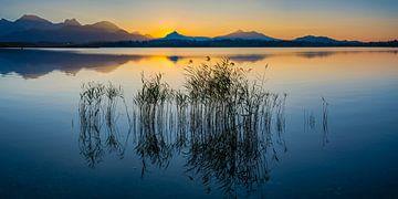Zonsondergang, Hopfensee meer van Walter G. Allgöwer