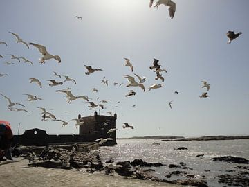 Strand, Essaouira Marokko van Margot van Dijk