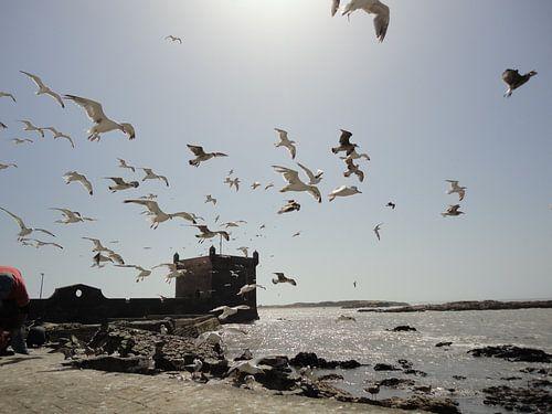 Strand, Essaouira Marokko von Margot van Dijk