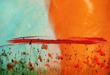 Poppy Field van Maria Kitano