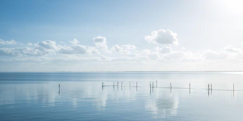 Hollands waterlandschap met reflectie van wolken en fuikpalen. van MICHEL WETTSTEIN