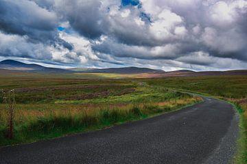 Wicklow Mountains Irland von Charlotte de Moet