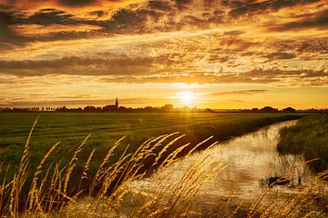Het gouden uur Noord-Holland van Marijke Trienekens
