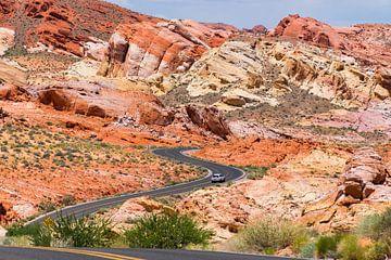 Roadtrip in Valley of Fire State Park in Amerika van Linda Schouw