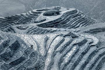 Longji rijstvelden, Guangxi province, China von Ruurd Dankloff