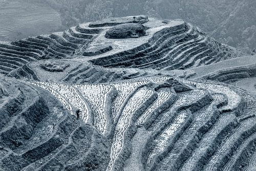 Longji rijstvelden, Guangxi province, China