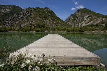 Path to the mountains van Leon van Voornveld