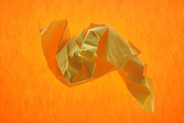 oranje geel van Brigitte van Ark