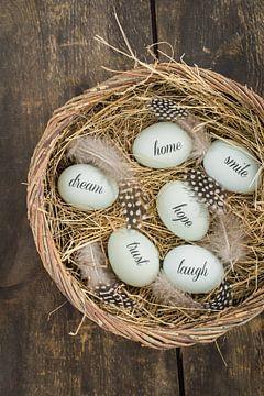 Eggs with messages van Elisabeth Cölfen