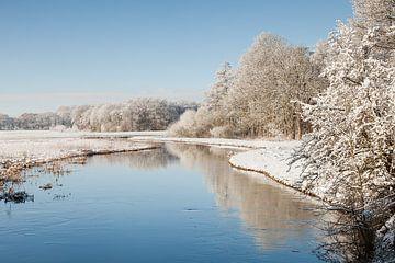 Winterse rivier met weerspiegeling van besneeuwde bomenn