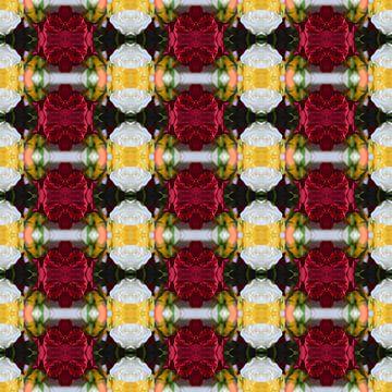 Fotografisch patroon met Rode en Witte Rozen van Ton Kuijpers