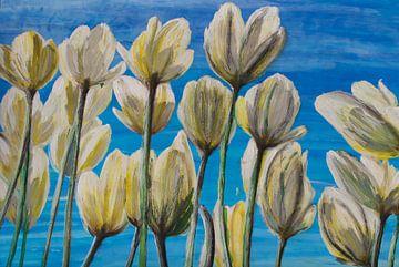 """""""Tulpis"""" sur Susanne A. Pasquay"""