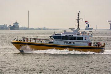 Pilots tender Lucida in actie op de Maasvlakte. van scheepskijkerhavenfotografie