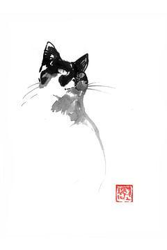 cica von philippe imbert
