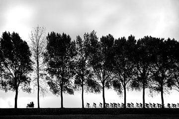 Radsport-Silhouetten von Leon van Bon
