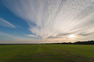 Uitgestrekt gemaaid grasland in Nederland in de avondzon van Tonko Oosterink