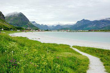 Der Strand von Ramberg auf den Lofoten von Gisela Scheffbuch