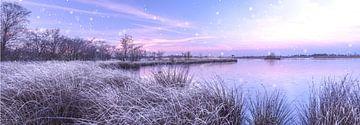 Pastel zonsopkomst van Bjorn Dockx