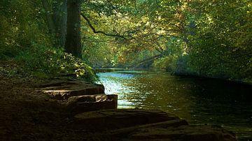 Fluss von Daphne Photography
