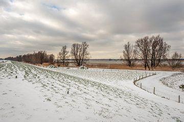 Ufer des holländischen Flusses Amer in der Wintersaison von Ruud Morijn