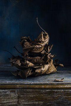 Stilleven herfstblad van Clazien Boot