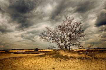 Sand von Geri van den Boom