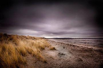 strand  van Saskia Staal