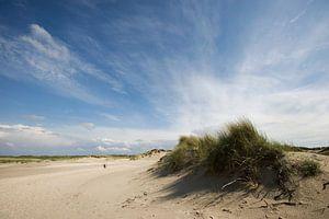 Slufter-Texel van