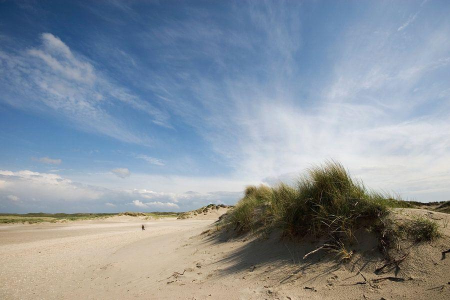 Slufter-Texel