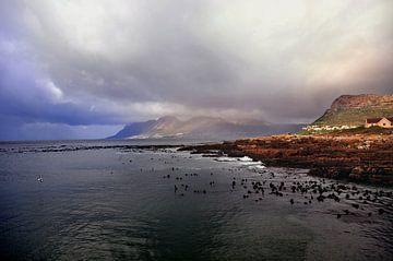 Kaapstad von Niqi Segers